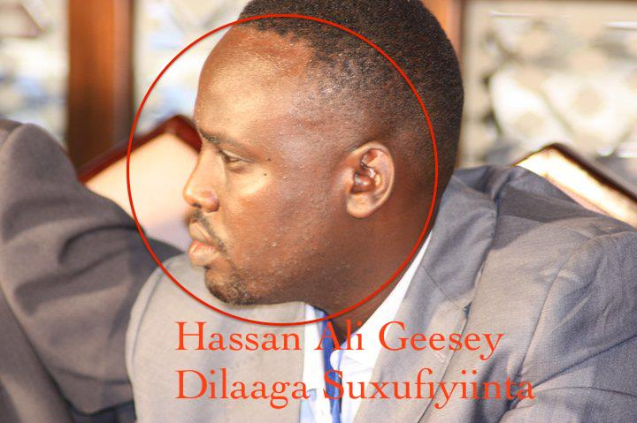 Somalia:What do you know about Hassan Ali Geesey?