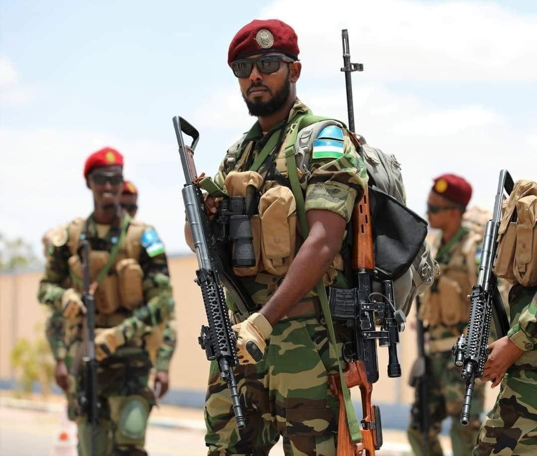 Somali Goverment turned Into an instrument of Revenge.