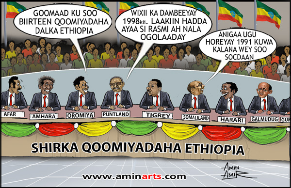 Jigjiga celebrates nationalities and People's day in Ethiopia