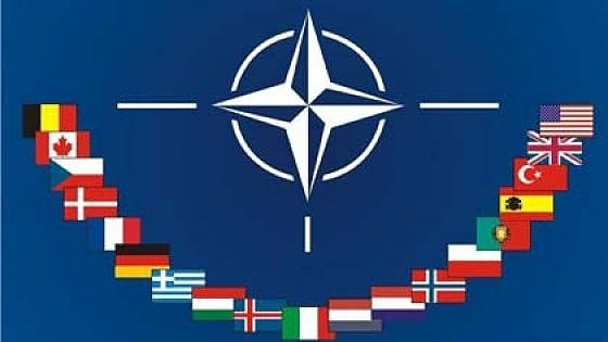 Nato's painful homecoming