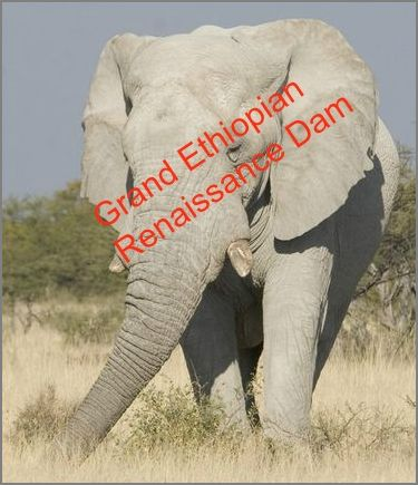 White Elephants in Ethiopia?DAM