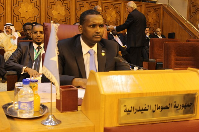 Somalia Asks Arab World for Military Support