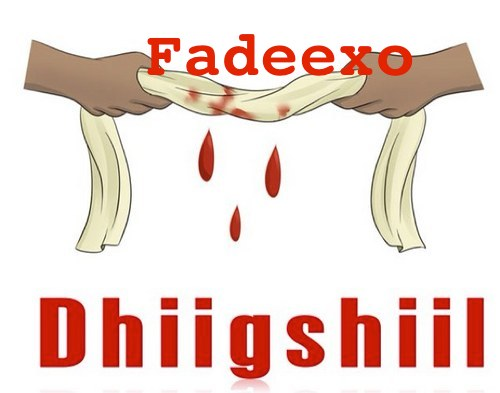 Topnews:-Fadeexo Xaaji Dhiigshiil oo isla guursaday haween walaalo ah - Isaga iyo Xersi Tooriile maxeey isu yihiin ?