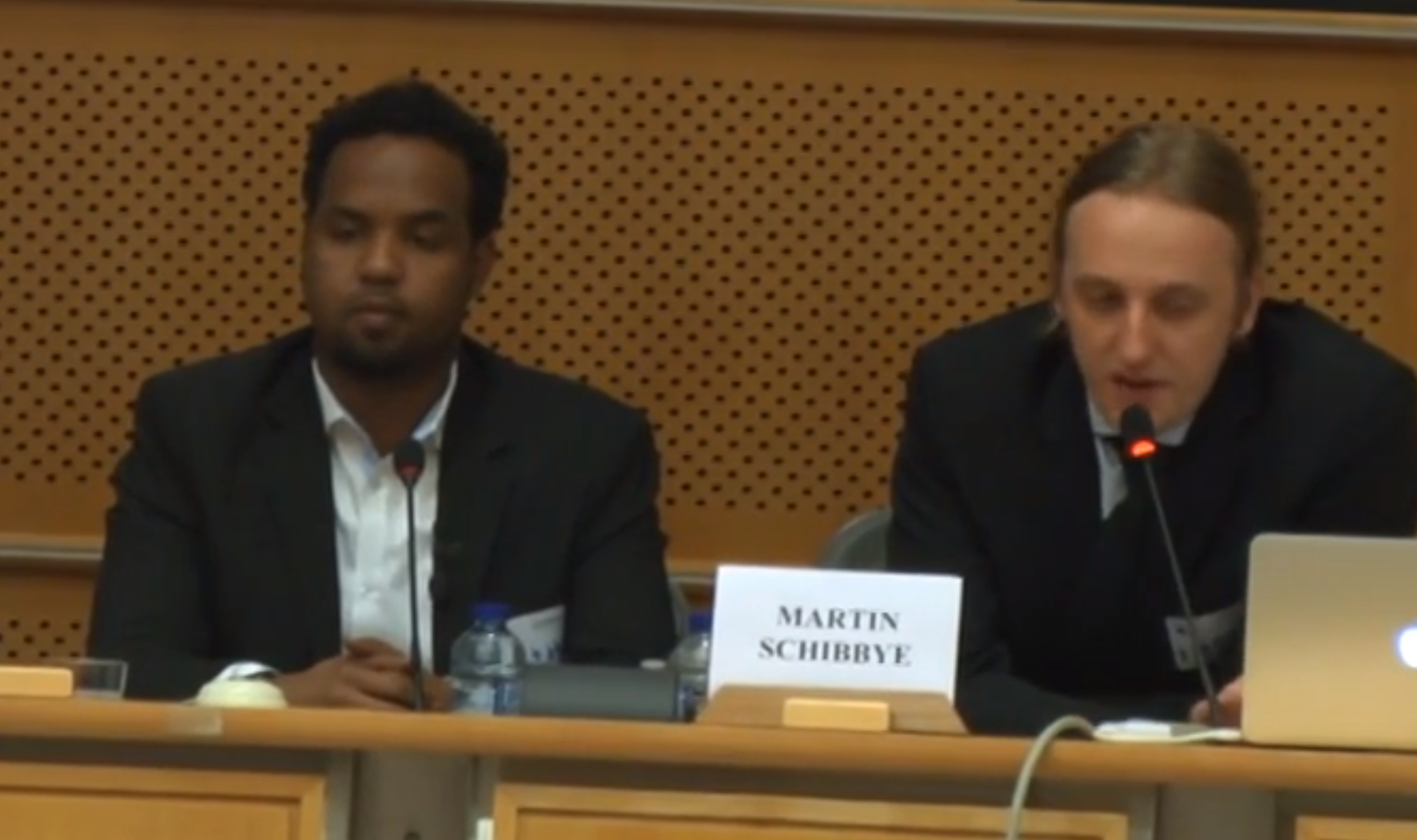 EU Parliament holds discussion on Ethiopian human rights in Ogaden and Kality Prison