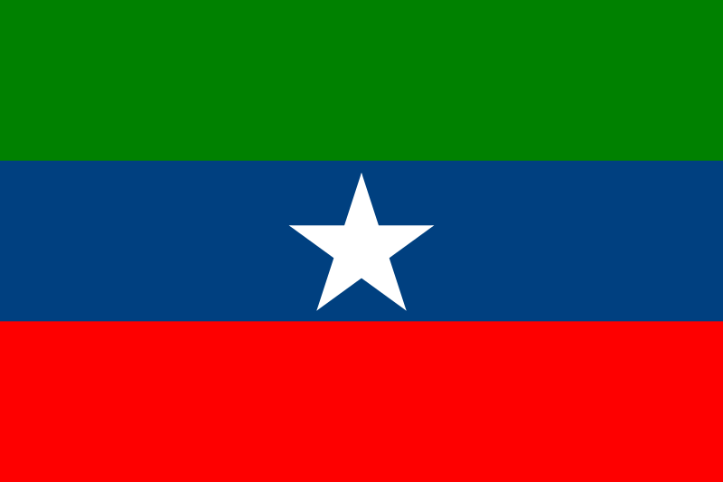 The ONLF replies to the UN Monitoring Report - deny links with Al-Shabaab