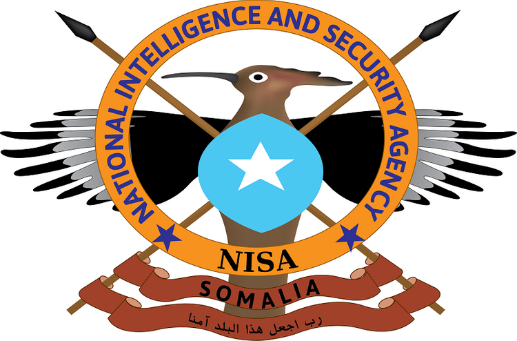 Somalia's Intelligence to make Agency's name changes
