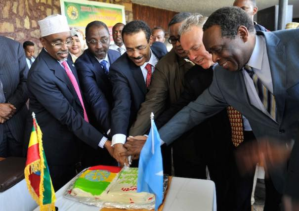 Somalia: Commentary on Presidential Decree Legalizing 2016 Election