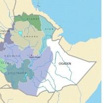 Breaking NEWS : Ethiopia and Ogaden Peace Talk Resumed Today in Nairobi, Kenya