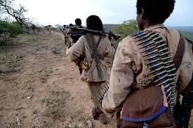 Ethiopia : ONLF and Ethiopian Soldiers Clash in Ogaden Region