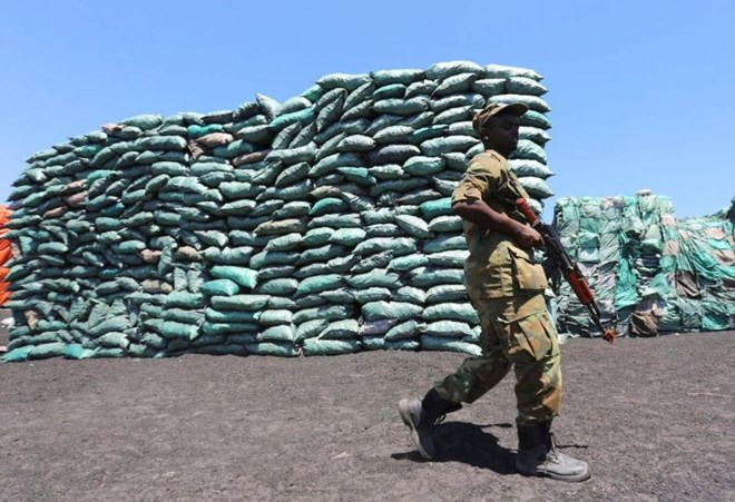Iran is new transit point for Somali charcoal in illicit trade taxed by militants: U.N. report