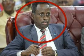 Somalia:The Biography of the current Minister for Information