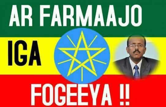 "Somali President true scandal ""violation of law"""