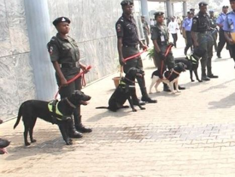 NIGERIAN POLICE, CIVIL DEFENSE DEMAND N1BILLION TO FEED HORSES AND DOGS ETC AHEAD OF 2019 ELECTIONS