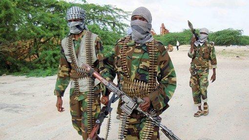 Two Somali lawmakers killed in al-Shabaab ambush – army officer- Reuters