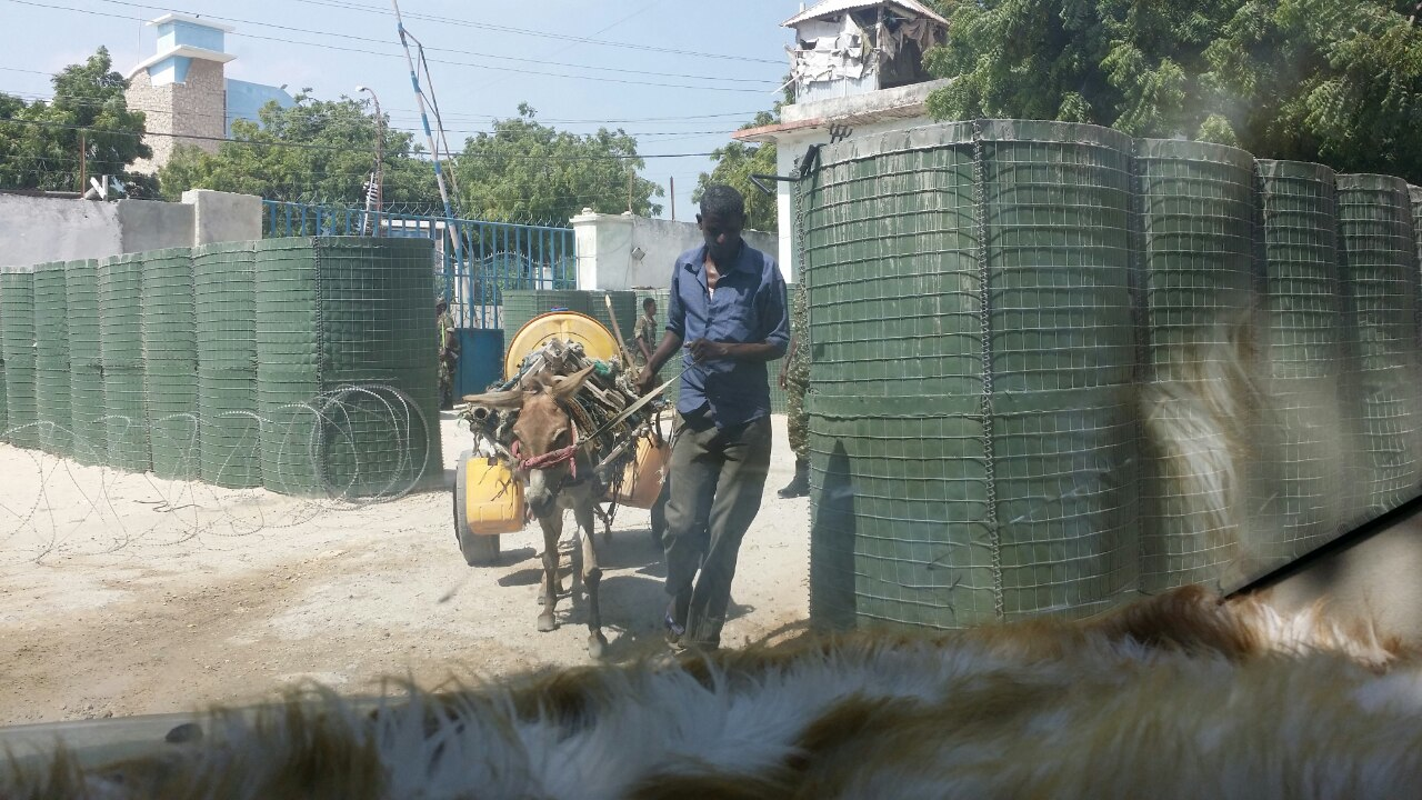 Somalia:Donkey hauling water at the gate of the ministry of information amid water shortage