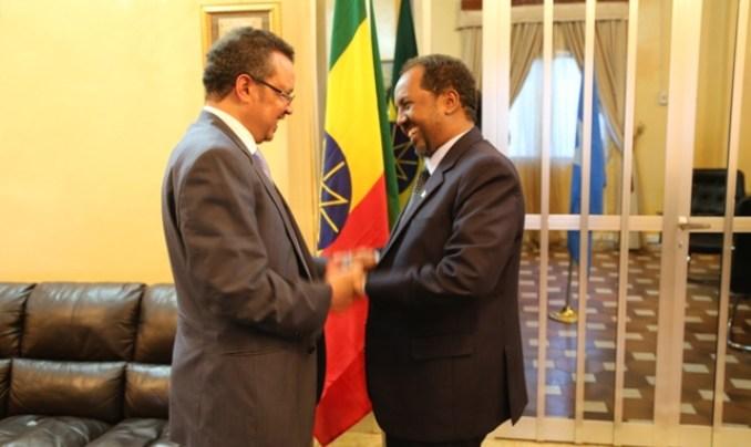 Ethiopian professor writes about Ethiopia's policy of destabilizing Somalia